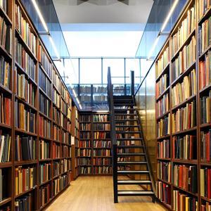 Библиотеки Шаховской