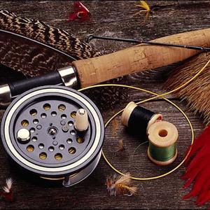 Охотничьи и рыболовные магазины Шаховской