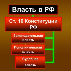 Органы власти Шаховской